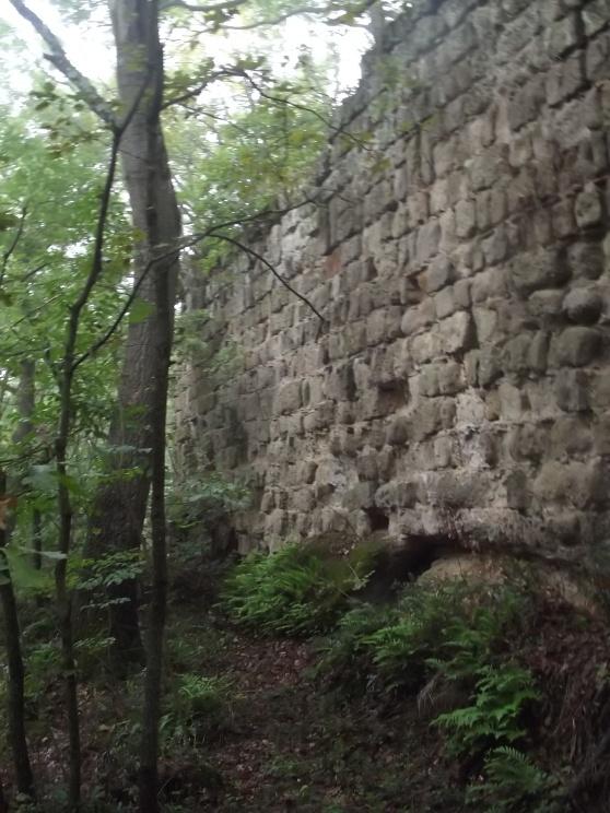 Le rovine del castello Orsini..  Orsini castle ruins...