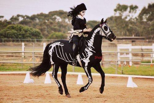 Halloween Costume Trends for 2013   halloween, costume, horse, skeleton - inspiring picture on Favim.com