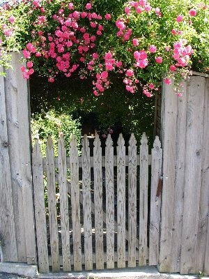 Cool Simple garden gate