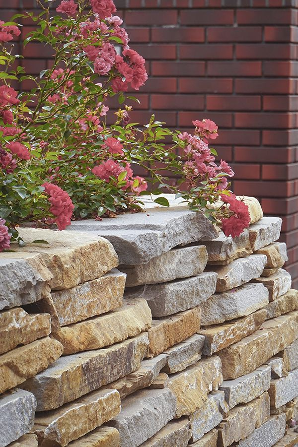 home garden design, aranżacja ogrodu i domu - Januszówka
