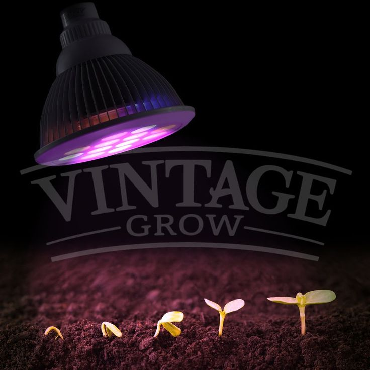 Amazon Com Vintage Grow High Yield Full Spectrum 640 x 480