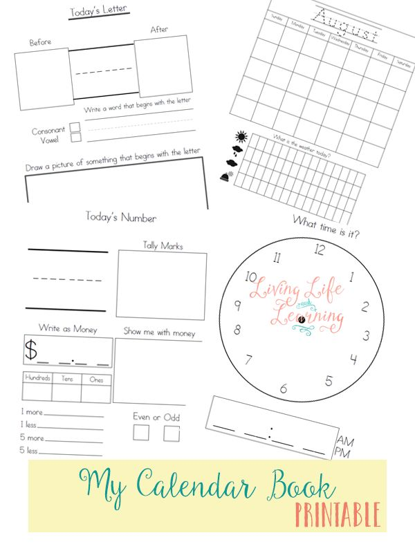 Free My Calendar Book Printable  Download a free My Calendar Book printable that helps kids in kindergarten and 1st grade keep track of the days, weeks, and months in the calendar year.