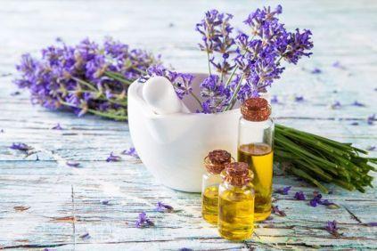 Θεωρείται ένα από τα 20 σημαντικότερα θεραπευτικά βότανα, «δώρα» της φύσης. Το όνομά της προέρχεται από το λατινικό lavare, που σημαίνει «πλύση» και πιστεύεται ότι χρησιμοποιήθηκε για πρώτη φορά ως προσθετικό λουτρού στην αρχαία Περσία, την Ελλάδα και τη Ρώμη.