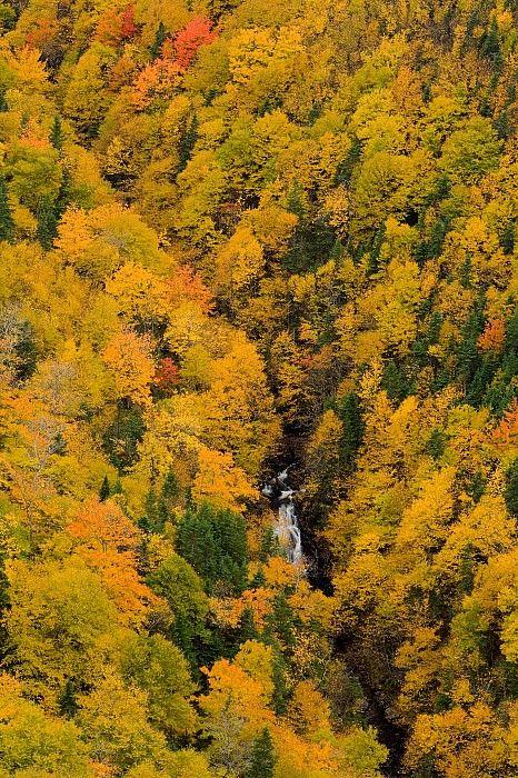 Cape Breton Highlands National Park, Nova Scotia, Canada; photo by John .Sylvester
