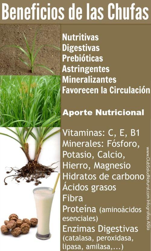 Horchata de Chufas Receta Casera y Beneficios de las Chufas - Club Salud Natural