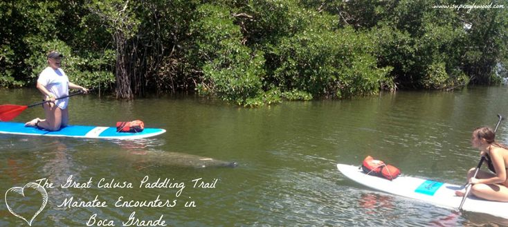 13 Best Paddle Board Locations Images On Pinterest