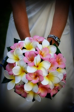 Pink and White Frangipani Boquet Erin! It's so Hawaii.  It's so you! Aloha sweetie.