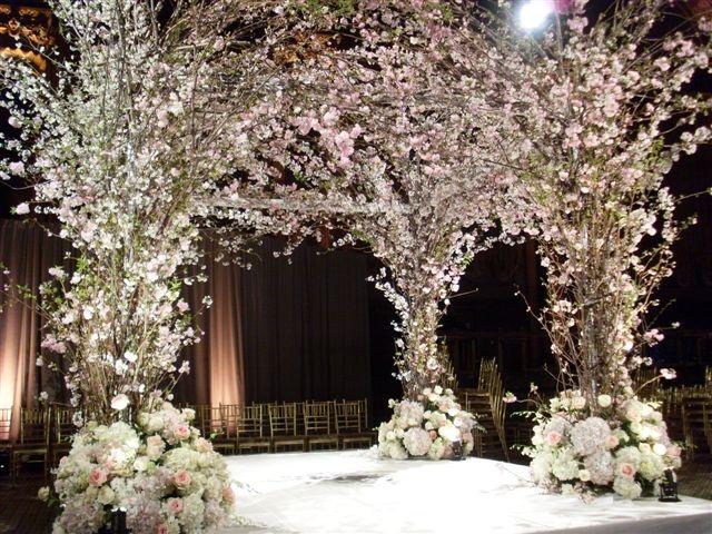 Cherry Blossoms Chuppah Fabulous Judypaulendesigns Gallerycfmimages 1EF9F0E5 BF41 D860 D1E7A6D001B3C160