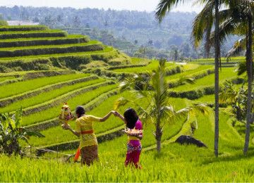 Amazing Bali Tour Package in 4 days 3 nights