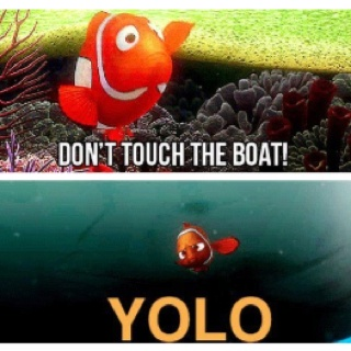 YOLO Marlin, YOLO.Yolo, Laugh, Quotes, Findingnemo, Funny Stuff, Things, Disney, Finding Nemo, Mottos