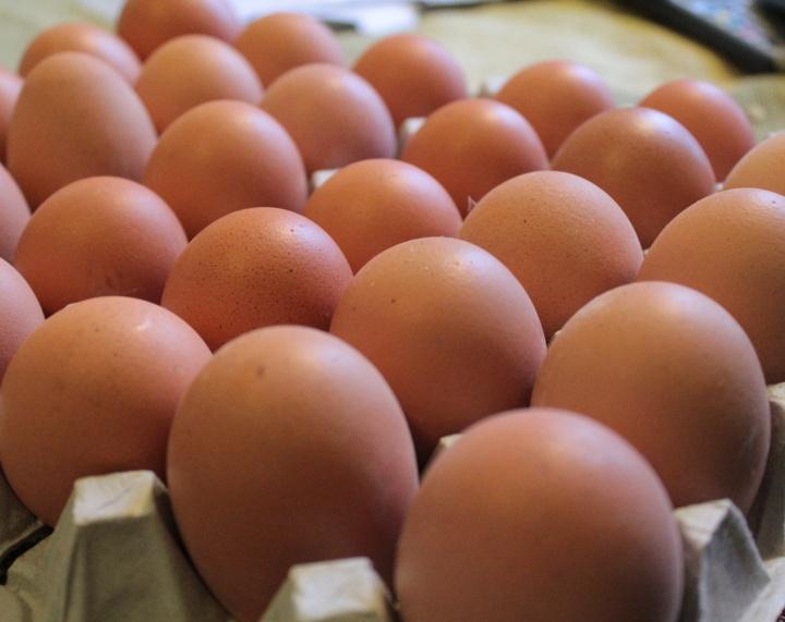 Kananmuna päivässä kuuluu ikäihmisen terveelliseen ruokaympyrään!
