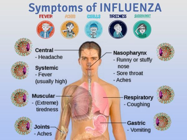 What Can Cause A Stomach Flu Symptoms  It could be due to stomach flu symptoms one of many different diseases such as food poisoning, or bacteria, or even some parasites. There is no way that you enjoy from stomach flu symptoms, obviously, but you can get treated in some cases. No matter how old or young you are, you can still suffer from it. Infants often gets from stomach flu symptoms, as well as their parents. These types of symptoms are just one of those things that don't seem to grow…