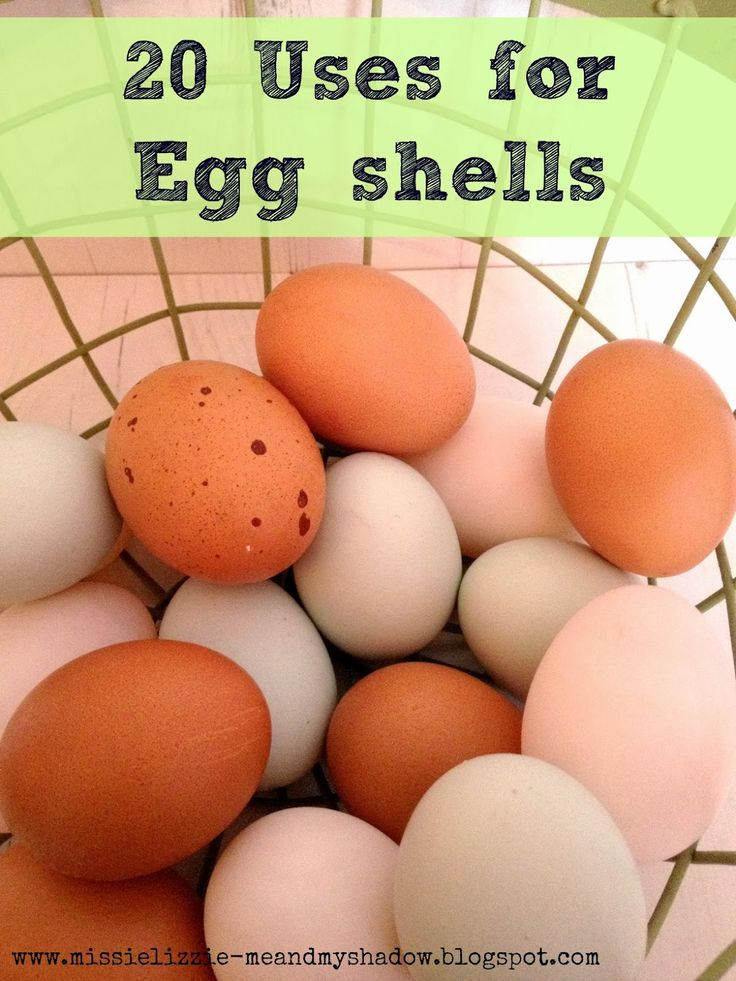 20 alternative uses for eggshells - so cool! I was just thinking today what a shame it was that I had to through out egg shells after baking! now I have somethings to use and save them for!