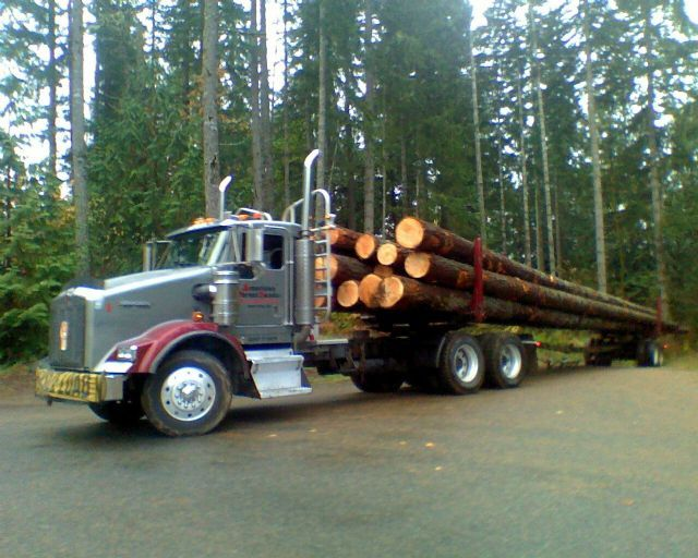 Timber company pierce county, timber companies pierce county, timber companies mason county, Fir logs for sale washington, timber buyers washington, logging companies grays harbor county, sell my timberland ,washington, forestland investment washington,timber cruisers washington, logging companies thurston county,  timberland valuations washington,timber companies jefferson county, washington timber companies,  timber companies washington,what is my timber worth washington, sell my logs…