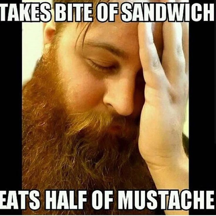 Funny Beard Meme | Beard Humor | Bearded Men Problems |