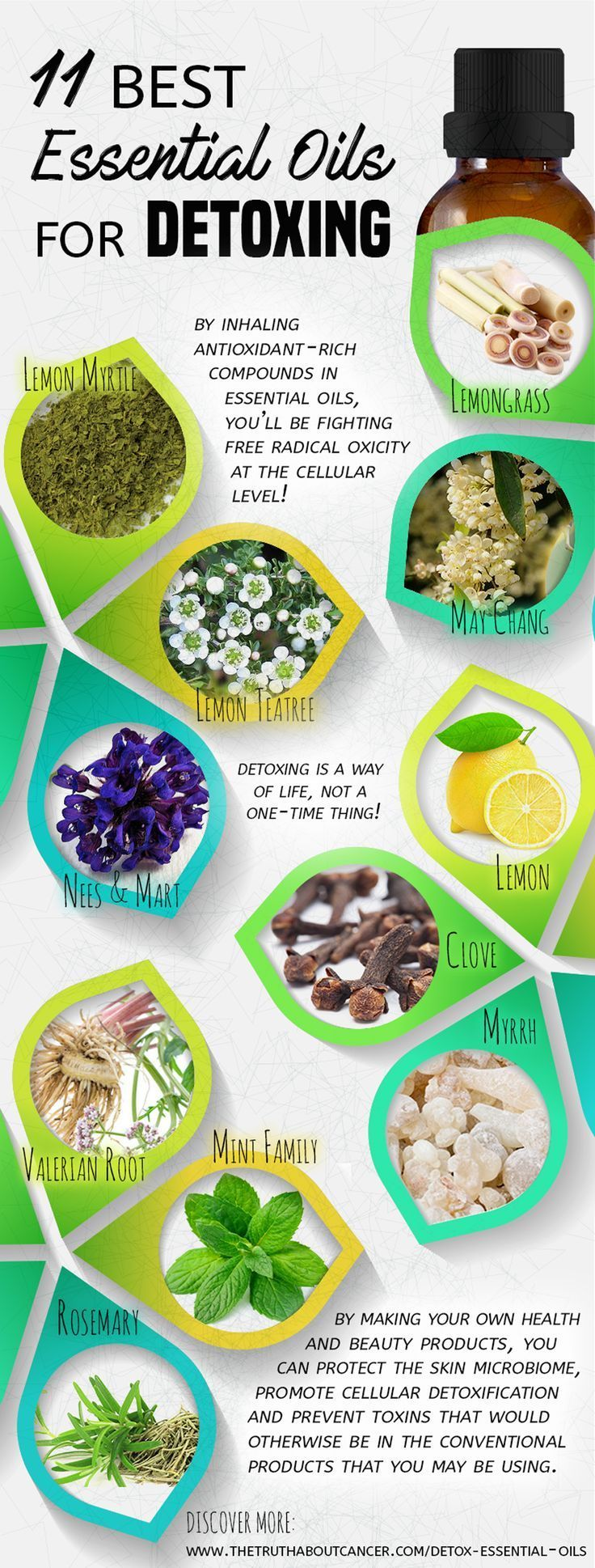 11 of the Best Essential Oils for Detox