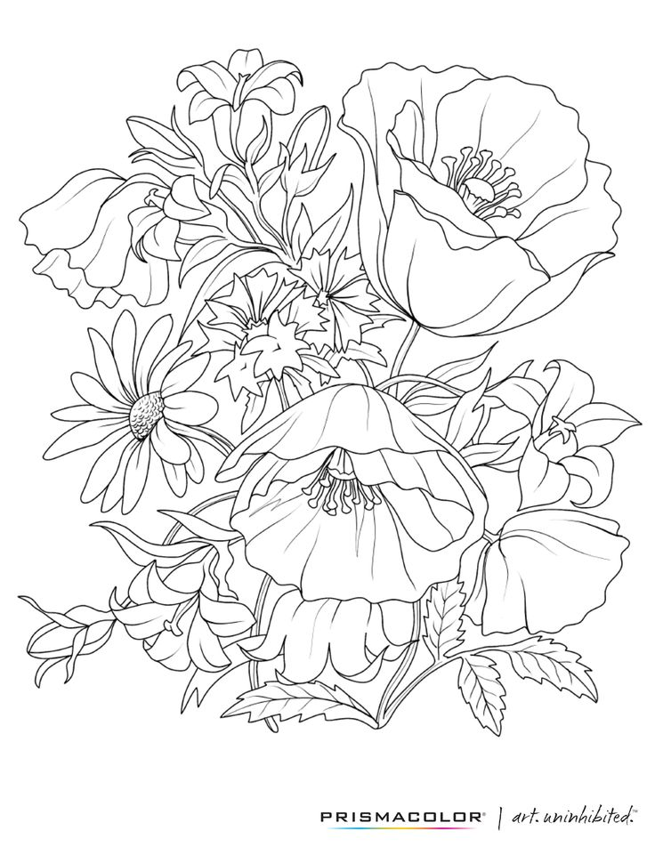 What a beautiful flower adult coloring page!