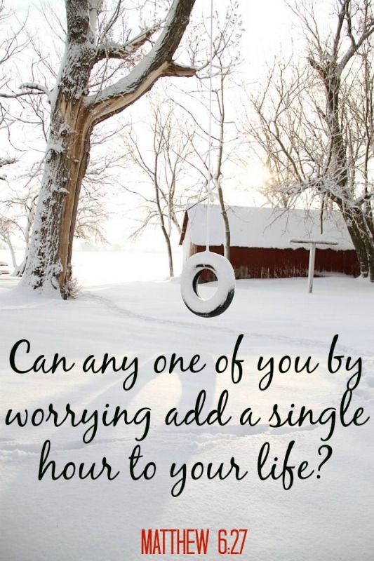 "Trust in the Lord~ ""Can any one of you by worrying add a single hour to your life?"" -Matthew 6:27 [with image of a snowy country scene including a snow covered tire swing]"