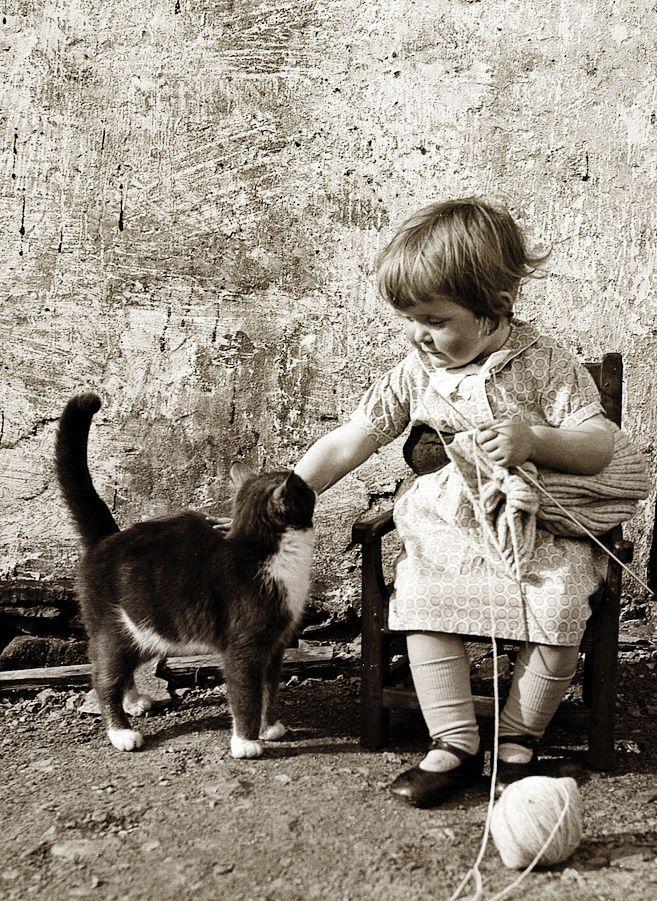 Girl knitting but taking a break to pet her kitty. ca. 1940 Walls, Shetland.