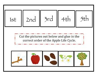 Preschool Printables: Apple Life Cycle