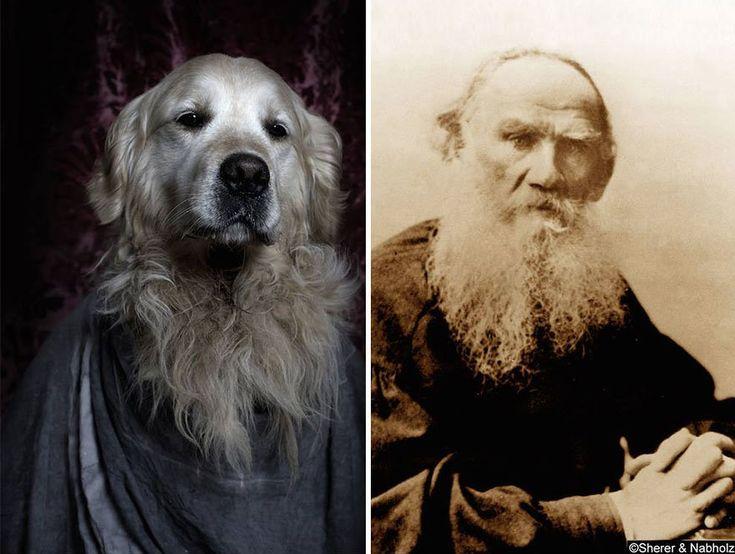 Литературненький гав-гав: Собаки из приюта в образе великих писателей