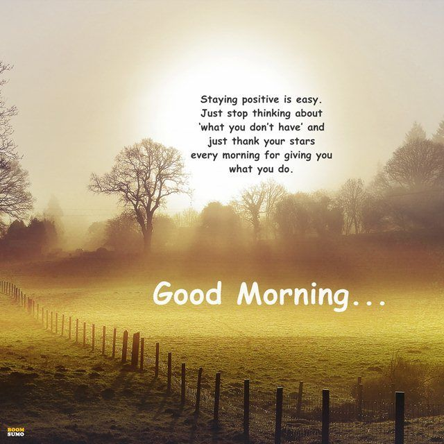 Good Morning Quotes Just Stop Thinking Stay Positive Morning