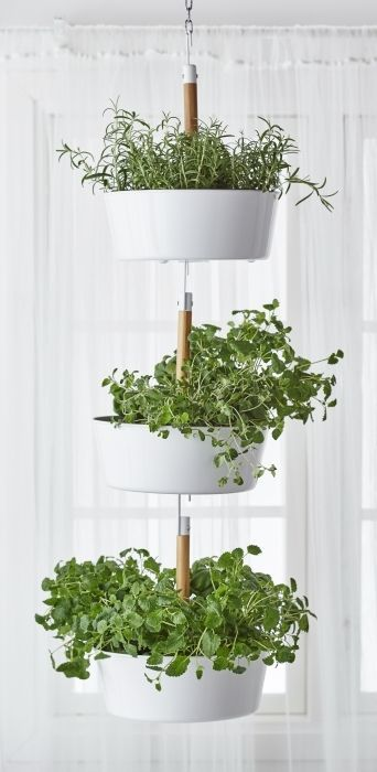 BITTERGURKA hanging planter - Use a single one or hook a few planters together to create a vertical herb garden indoors. Hang your herbs by a window, then unhook and bring to the table or cooking pot for fresh herbs with every meal.
