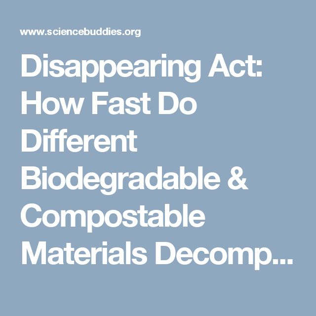 Disappearing Act: How Fast Do Different Biodegradable & Compostable Materials Decompose?
