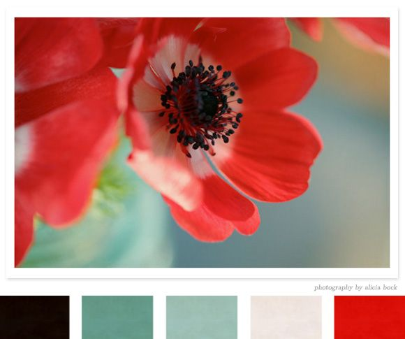 Nature-inspired color palette: the orange red/aqua green is perfect