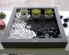 17 best ideas about mini jardin zen on pinterest jardin - Mini jardin zen ...