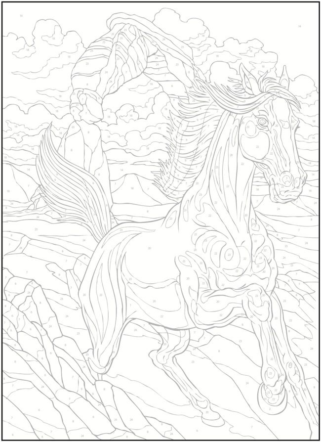Creative Haven Horses Color by