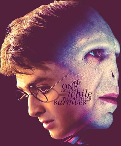 Harry & Voldemort