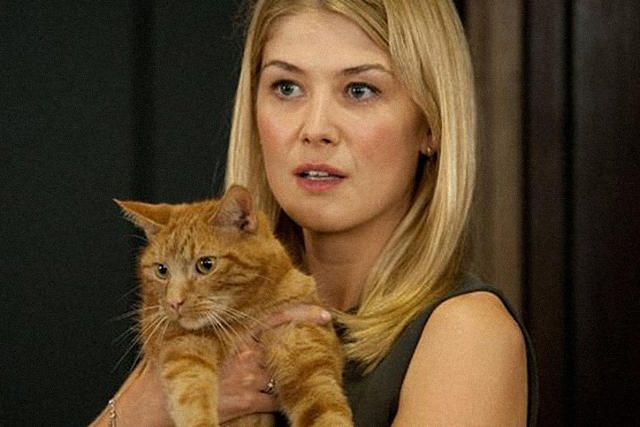 Why 2014 Is The Year Of The Ginger Cat. Hit movie Gone Girl has marquee names: director David Fincher, actor Ben Affleck and a music score by Trent Reznor. But the breakout star is a cat who, heretofore, has remained uncredited.