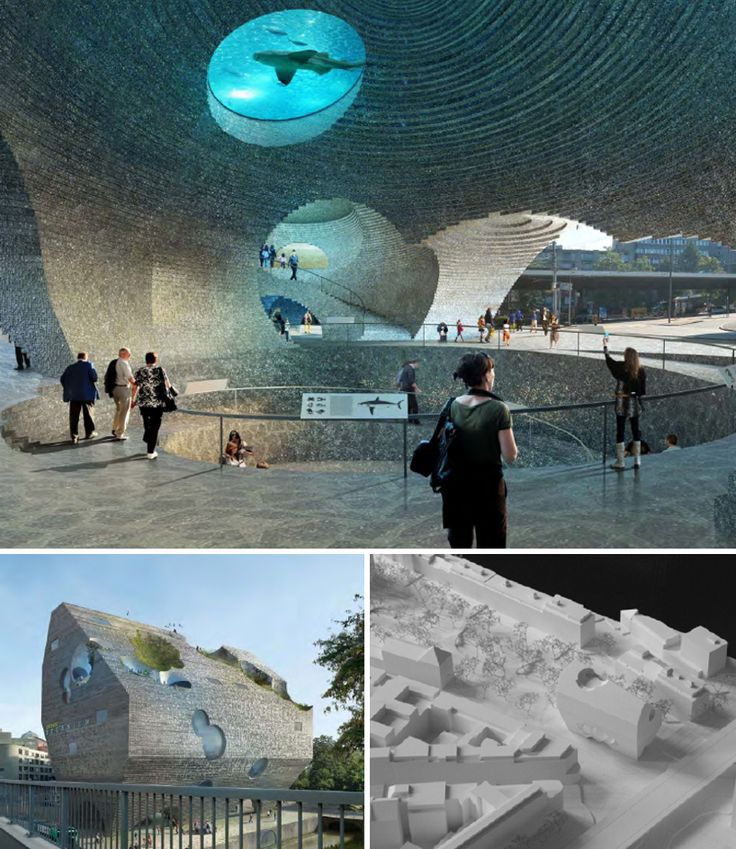 baselzoo03    boltshauser architekten of switzerland has won the bid to design the basel zoo aquarium    dec 13 2012 article