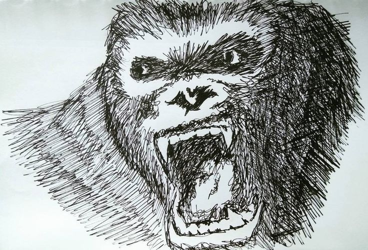 Kong . . #kingkong #kongskullisland #pen #penart #pendrawing #pensketch #ink #inkdrawing #inksketch #artoftheday #illustration #linework #blackwork #artlovers #instaart #artwork #sketch_daily #artistic_share #dailydrawoff #inkfeature #blackworknow #linedrawing #handdrawn #thedesignfix