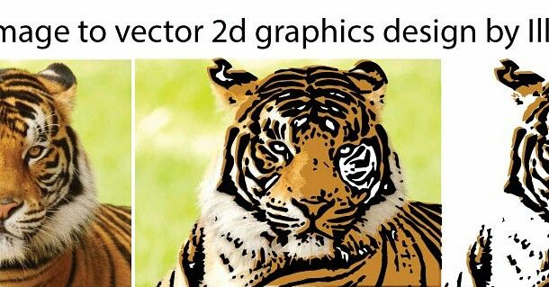 TIGER Image to vector 2d graphics design by Illustrator . https://www.behance.net/gallery/52362671/TIGER-Image-to-vector-2d-graphics-design-by-Illustrator