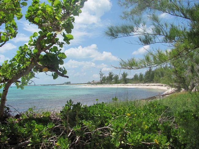 .: Bita Bay, Turtle Cay