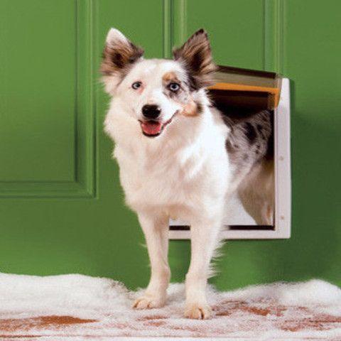 96 Best Pet Doors Images On Pinterest Pet Door Dog Accessories