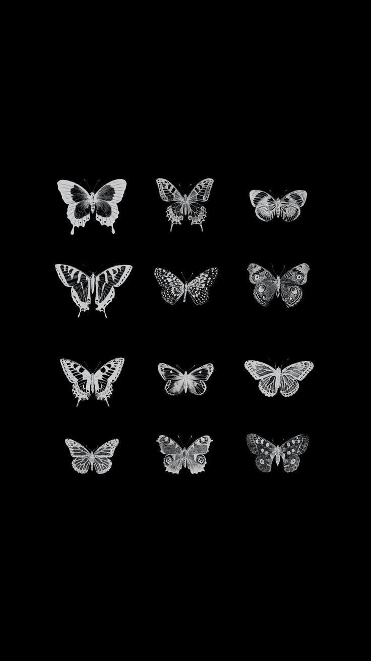Armaniasia Butterfly Wallpaper Iphone Butterfly Wallpaper Black Aesthetic Wallpaper