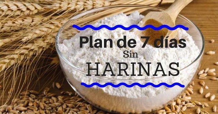 Si eres aficionado al pan, las galletas, los bizcochos... este plan sin harinas refinadas de 7 días es perfecto para ti. ¡Notarás la diferencia!