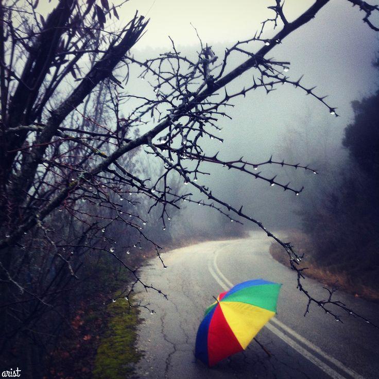 walking in the rain..  #misty #fog #paradise