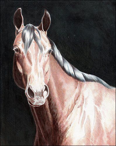 Fast & Easy Background Options for Colored Pencil Drawings. Colored pencil over India ink is a fantastic way to draw dark backgrounds quickly.
