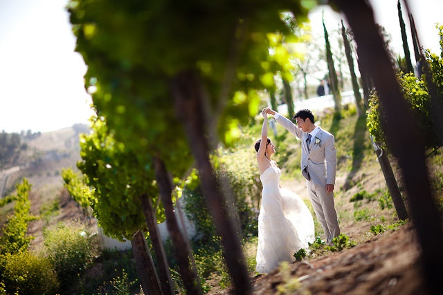Samantha + Matt | Falkner Winery Wedding by Brandon Wong. Brandon Wong Photography | Photographed by Brandon + Katrina