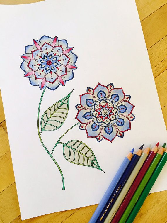 Hand Drawn Adult Coloring Page Print Blossom By MauindiArts