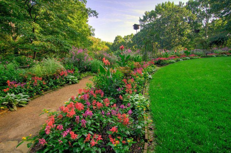 15 best Georgia Gardens images on Pinterest | Camellia, Georgia and ...