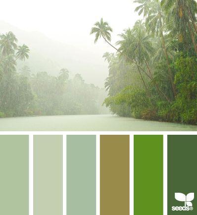 11 Best Rain Forest Color Schemes Images On Pinterest