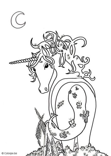 Complicolor Unicorn Printable Pages And Coloring Books For Grown Ups At