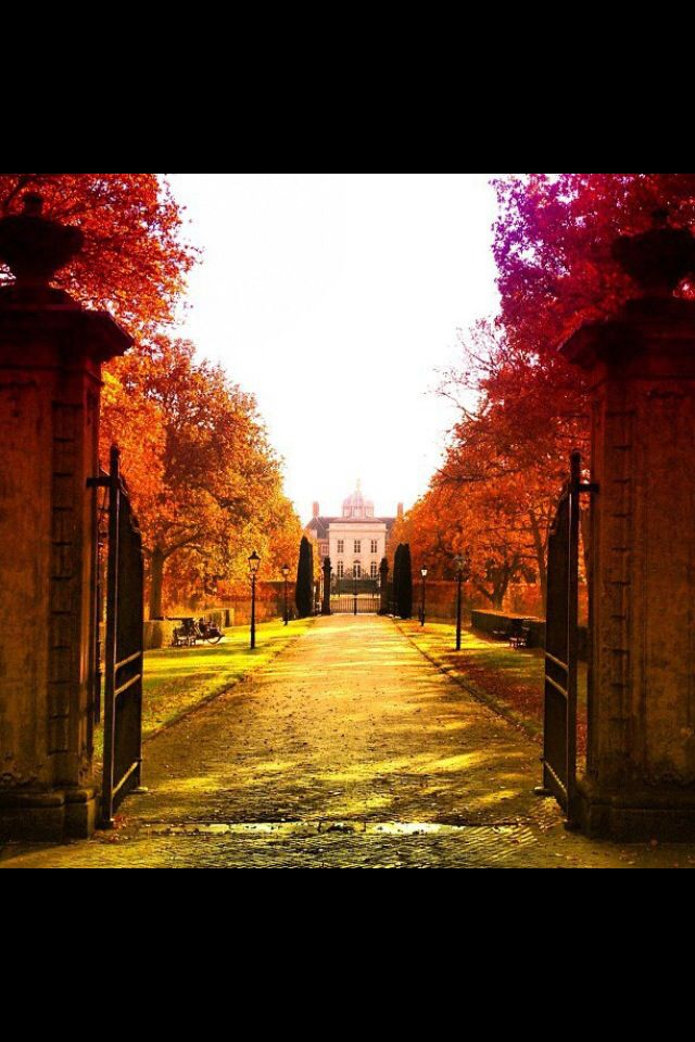Royal palace the Hague, huis Ten Bosch