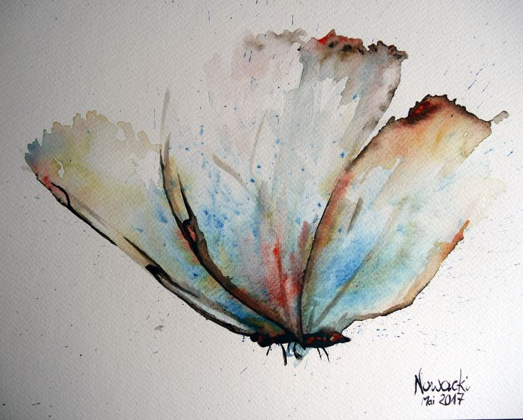 Schmetterling in Aquarell