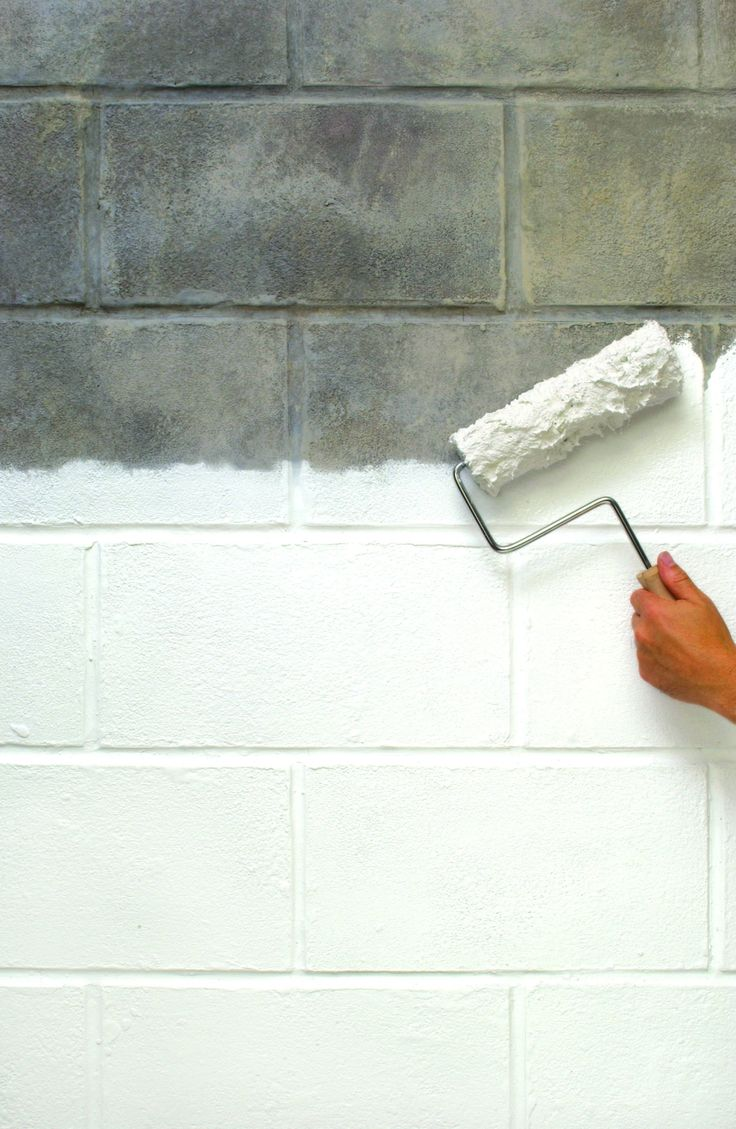 How to clean mold off walls - Zinsser Watertite Mold Mildew Proof Paint Creates An Impermeable Barrier In Just Two Coats Your Walls Will Stop Moisture In Its Place